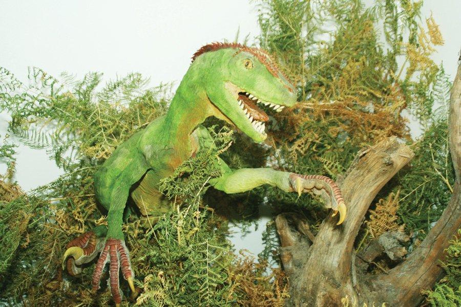 Lumea dinozaurilor poate fi descoperită, duminică, pe bicicletă