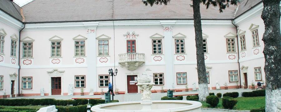 Muzeu-Magna-Curia-9871