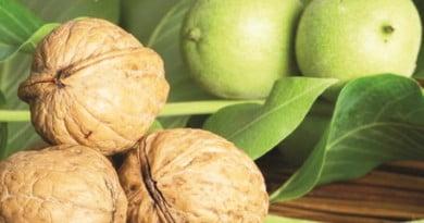 Nucile – medicamente naturale de excepție